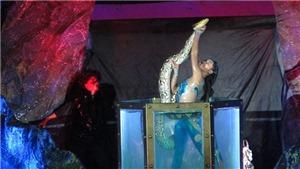VIDEO: Nữ nghệ sĩ xiếc mạo hiểm biểu diễn cùng trăn khổng lồ trong bể nước