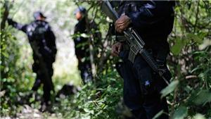 Mexico phát hiện hàng chục thi thể trong các hố chôn tập thể