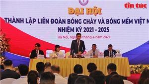 Ông Trần Đức Phấn làm Chủ tịch Liên đoàn Bóng chày và Bóng mềm Việt Nam