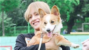 Mê mệt với những thú cưng nổi tiếng không kém gì chủ của sao Kpop