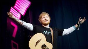 Người thắng lớn nhất trong album mới của Ed Sheeran là các bạn đồng hành