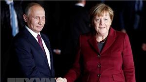Cuộc gặp giữa lãnh đạo Nga-Đức diễn ra với hình thức bất thường