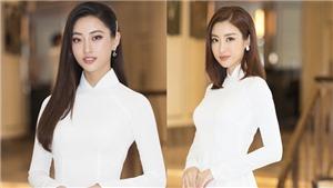 Khởi động cuộc thi Hoa hậu Việt Nam 2020 sau thời gian tạm hoãn vì dịch Covid-19