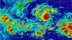 Bão số 9 giật cấp 11 tiến vào bờ biển phía Nam, các kỹ năng ứng phó với bão lũ